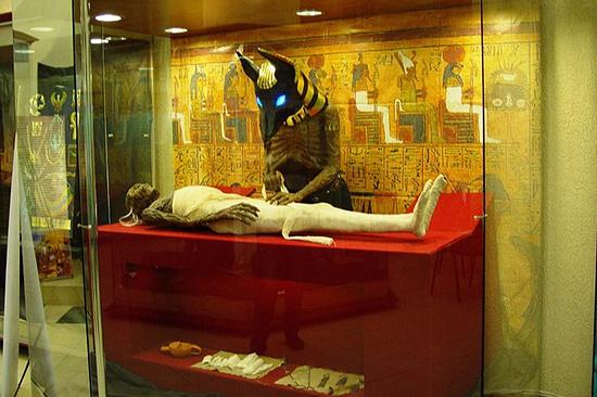 Интерактивная выставка старинного Египта впервый раз приехала вСтаврополь