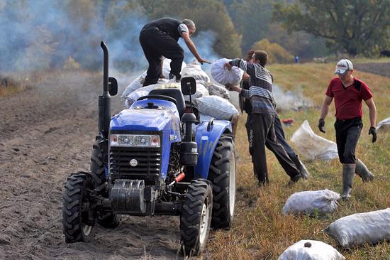 НаСтаврополье планируют открыть 15 новых сельхозкооперативов в 2017г.